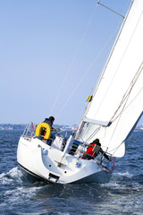 Yacht Sailing Regatta In Scandinavia