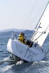 Yacht Sailing Regatta In Scandinavia