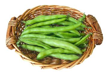 broad beans, horse beans,fava beans