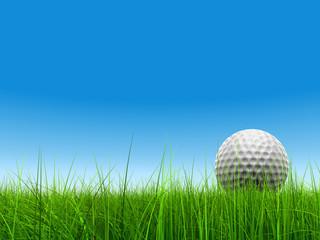 3d white golf ball in green grass