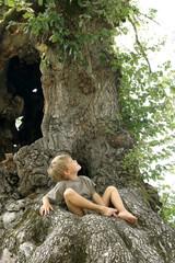 l'arbre et l'enfant