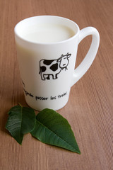 Cup of milk and Green Leaves