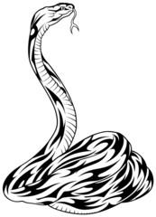Snake - black outline illustration