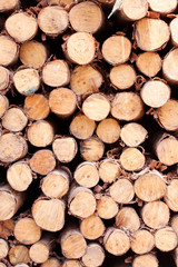 Foto op Textielframe Brandhout textuur Sticks background