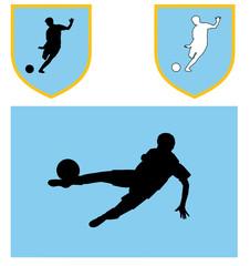 colori sociali calcio azzurro celeste