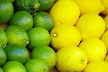 Limone Zitrone - lime citrous 02