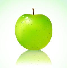 Vector illustration of detailed big shiny green apple