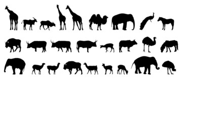 various animals silhouettes