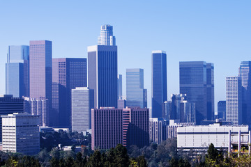 Wall Mural - Los Angeles Skyline in Morning