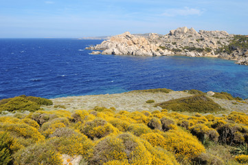 spring sardinia landscape with vegetation, rocks and blue sea