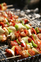 barbecue with skewer