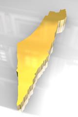 3d golden map of Israel