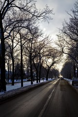 A city road in winter