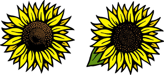 Sunflower Vector Drawing