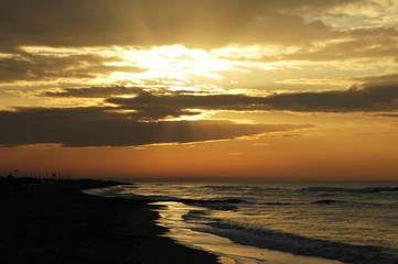 L'alba dorata