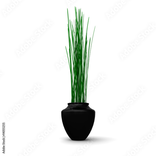 topfpflanze schwarze vase stock photo and royalty free images on pic 14055255. Black Bedroom Furniture Sets. Home Design Ideas