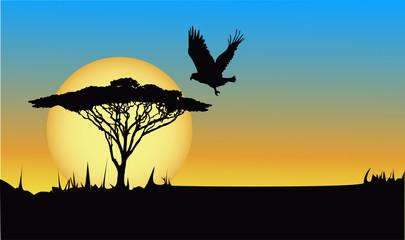 Tree and eagle at dawn