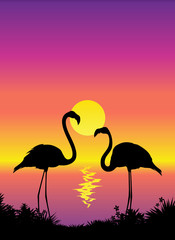 Tropical scene view with flamingos