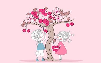 gathering cherries