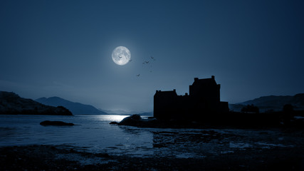 Printed roller blinds Castle Eilean Donan Castle by night