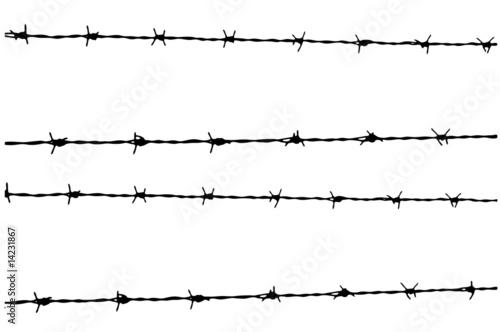 Amazon.it: filo spinato militare