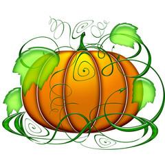 Zucca-Halloween Pumpkin-Citrouille