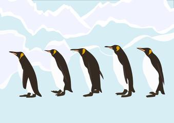 Penguins walking in ice