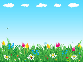 Fresh green grass and wild flowers meadow background