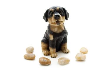 Hund und Steine