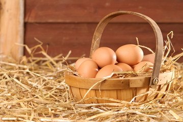 Eggs In The Barn