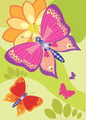 Bright easy butterflies flitter round wonderful flowers