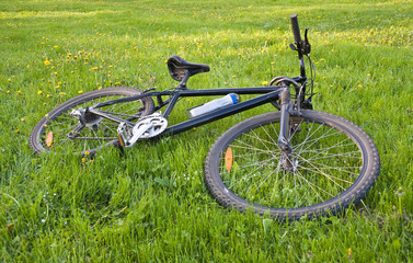Bicycle lying on grass