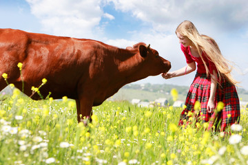 happy girl feeding cow on meadow