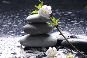Stacked stones and white flower and water drops