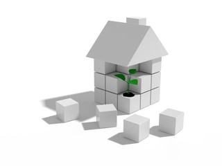 Green leaf in house