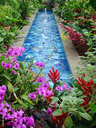 United States Botanic Garden Washington Dc Stock Photo And Royalty Free Images On