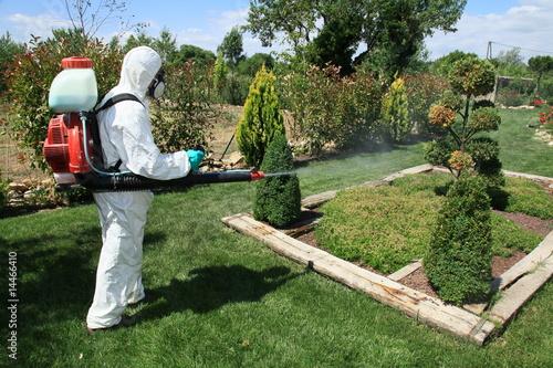 Le jardin entretien photo libre de droits sur la banque for Entretien jardin 31
