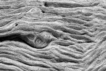 Swirling weathered wood grain