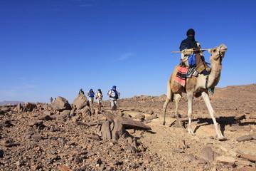 Caravane de randonneurs dans le désert