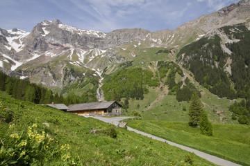 Alpe im Brandnertal