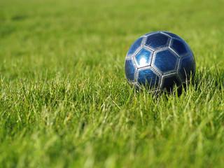 Blue Soccer Ball on Grass