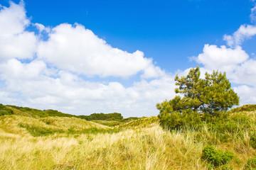 Fototapete - Dünenlandschaft