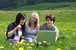 Junge Leute mit Laptop in Wiese