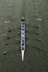 Rowing In Crew Races