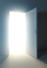 light door