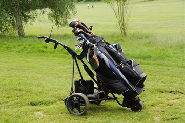 Electric Golf Caddy