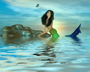 Foto op Aluminium Zeemeermin Mermaid on Rocks
