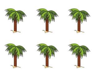 Palm Tree Background