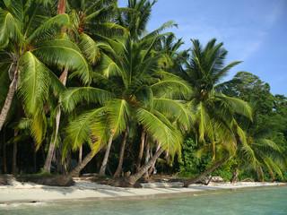 Beach no. 5, Havelock Island, Andaman Islands, India