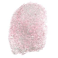 fingerprint - pink